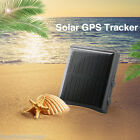 Outdoor Solar Realtime GPS/GSM Animal Pet Monitor Tracker GPS Locator Waterproof