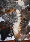 Soft Hackle Marabou mixed lot Spade Hackle Tailing Fly tying Grizzly Feathers m1