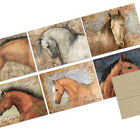 72 Note Cards Honorable Horses 6 Designs Kraft Envs