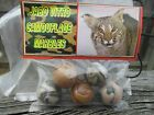 Bag of Jabo Vitro Camouflage Marbles (5 Large Shooters) *Nice/Mint/NM  *REDUCED!