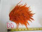 ORANGE GINGER GRIZZLY ROOSTER SADDLE HACKLE BASS SALT WATER HAIR FEATHERS DD