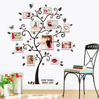 Best Large Photo Frame Family Tree Removable 3D Wall Stickers Art Decal Decor