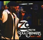 What I Need, Zo and the Soul Breakers, Acceptable