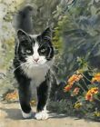 Tuxedo Cat Art Painting PRINT Watercolor Portrait Realistic Realism Black White