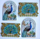 PUNCH STUDIO Set of 4 Die Cut Blank Note Cards Peacock Feathers Thank You