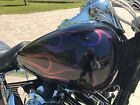 2009 Harley Davidson Softail UPER CUSTOM Fat Boy CHECK IT OUT Look at that paint job