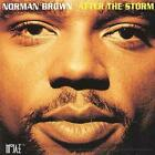 Norman Brown : After The Storm CD (2000)