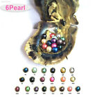 D371 AFF4 CF75 6pcs Akoya Pearl Oysters With Real Pearl 6-7mm Freshwater Pearl