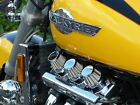 Honda Valkyrie, F6C, Stainless Steel Dragon Stacks Custom Kit
