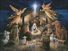 Needlework Embroidery DMC Color Counted Cross Stitch Kits 14 ct The Nativity