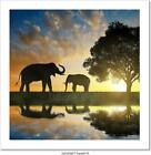 Silhouette Elephants Art Print Home Decor Wall Art Poster E