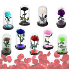 Forever Rose Flower Festive Preserved Immortal Fresh Rose in Glass 9 COLOR Gift