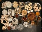 Huge Vintage Bead Lot White Beige Glass Lucite Metal Pearls  Contemporary