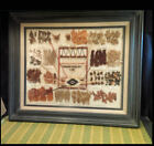 Wall Mount Display Native Plants Used to Dye Fabric for Weaving Blankets 23 27