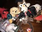Beanie babies lot Of 10 With Maple The Bear, Mac Bird, and Jake - Rare, Vintage
