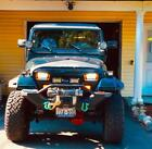1987 1995 WRANGLER YJ OVERLAY GRILLE GRILL MEAN FURIOUS ANGRY BIRD EYES FRP