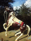 Native Indian CM Costume Traditional 19 Scale LSQ PSQ Beaded Breyer Stone Horse
