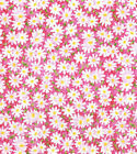 Daisy Flowers Floral Pink Packed Cotton Fabric Traditions by the Yard