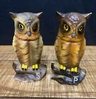 VINTAGE Brown Owl Perched On A Branch Salt And Pepper Shakers Free Shipping