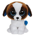 TY Beanie Boos - DUKE the St. Bernard Dog (Glitter Eyes) (6 inch) - MWMTs Toy