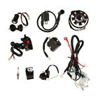 Complete Electrics CDI Wiring Harness Wire Loom for 150 250cc QUAD Bike