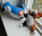 Beanie Babies, Chip the Cat and Rocket