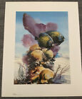 Rare Vintage Print French Angelfish By Russ Smiley Miami Florida 1987