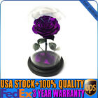 TOP Forever Rose Flower Immortal Fresh Rose In Glass Red Blue Black Gifts Decor