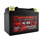 Banshee Replacement YTX4L BS 12V 3Ah LifePO4 Battery for Scooter SYM DD 50CC 09