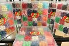 6 lbs Case LOT 6 Jelly Belly 20 Flavor Candy Jelly Beans Clear Gift Box 16 oz