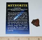 NANTAN IRON METEORITE with Color Information Card 4 10 gram size 10189 2o