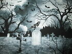 BATS CROWS GRAVE YARD BAT SPOOKY BLACK WHITE GRAY COTTON FABRIC BTHY