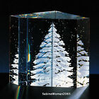 NEW in BOX STEUBEN Glass SNOW PINE ENGRAVED CRYSTAL ornamental paperweight xmas