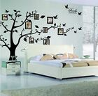 Family Tree Decal Wall Photo Frames Mural Art Removable Sticker Home Decor Room