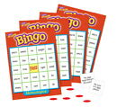 Trend Homophones Bingo Game - 5 x 5 inches - Set Includes 36 Cards, 700 Markers,