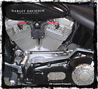 Harley Davidson 2004 Up EFI Softail Coil Relocation Plug N Play fuel injected