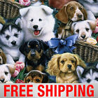 Fleece Fabric Dog Puppy 60 Wide Style 4002 Free Shipping