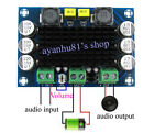 DC 12V-24V TPA3116 D2 100W Mono Channel Digital Audio Power Amplifier Board car