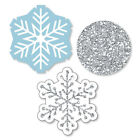 Winter Wonderland DIY Shaped Snowflake Holiday Party  Wedding Cut Outs 24 Ct