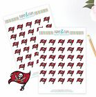 Tampa Bay Bucs Planner Stickers Perfect for all Planners like Erin Condren
