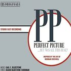 Perfect Picture (CD Used Very Good)