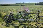 Thorn Triple Tandem Bicycle A bike for 3