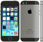 APPLE iPhone 5S 16 Go Space Gris reconditionn ...