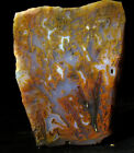 Bull Canyon moss tube agate slab great colors