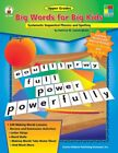 BIG WORDS FOR BIG KIDS SYSTEMATIC SEQUENTIAL PHONICS AND SPELLING By NEW