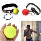 Fight Ball With Head Band For Reflex Speed Training Boxing Boxing Pu
