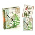 Michel Design Works Library Notes Dragonfly Kingdom 2 Designs 12 Note Cards Env