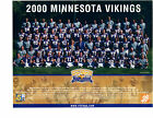 Minnesota Vikings Collecting and Fan Guide 4