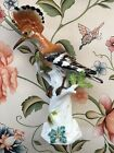 MEISSEN Hoopoe bird model, 19th-early 20th century, antique. Beautiful and rare