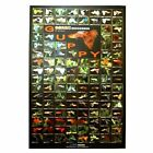 Azoo Guppy Poster - 114 Guppy Fish Species - High Quality Collector Poster
